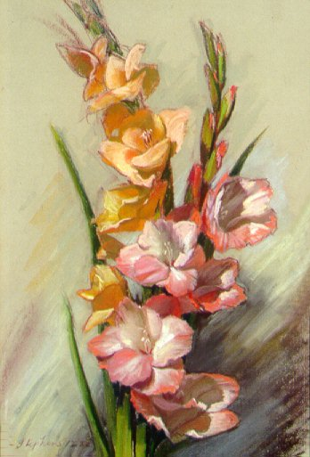 D21202: Mom's Gladioli - Beautiful still life paintings of freelance scientific illustrator and plein-air fine arts artist Patrice Stephens-Bourgeault