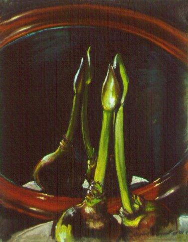 F10402: Amaryllis Tango - Beautiful still life paintings of freelance scientific illustrator and plein-air fine arts artist Patrice Stephens-Bourgeault